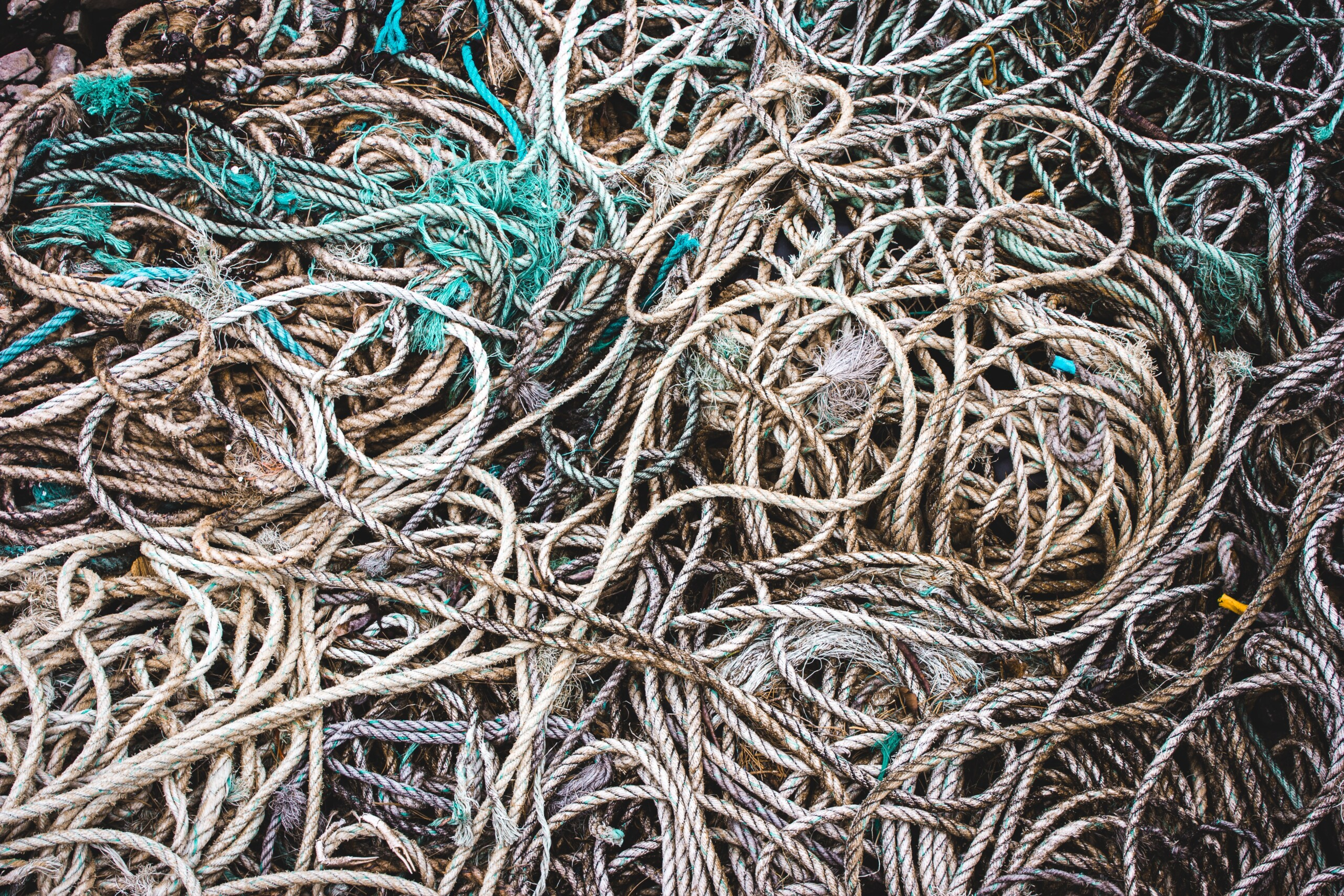 tangled mess of ropes